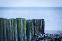 Baltic sea background evening wooden wave breaker beach Royalty Free Stock Photography