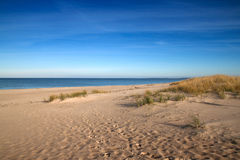 Baltic sea beach. Dunes on a baltic sea beach, Poland Royalty Free Stock Image