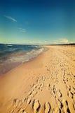 Baltic sea beach Stock Photography