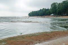 The Baltic sea beach in Repino Stock Image