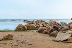 The Baltic sea beach in Repino near St Petersburg stock images