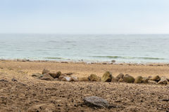 The Baltic sea beach in Repino near St Petersburg Stock Photography