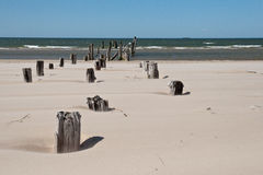 Baltic sea beach with rocks and old wood Royalty Free Stock Photography