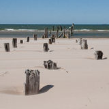 Baltic sea beach with rocks and old wood Royalty Free Stock Photos