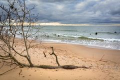 Baltic Sea beach in stormy weather Royalty Free Stock Photo