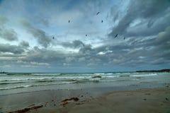 Baltic sea beach Royalty Free Stock Photography
