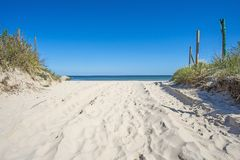 Baltic sea, beach Royalty Free Stock Image