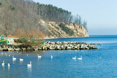 Baltic sea and cliff  in Gdynia Orlowo, Poland. Baltic sea and famous cliff in Gdynia Orlowo, Poland Stock Images