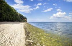 Baltic sea, cliff - Poland, Gdynia Orlowo Royalty Free Stock Photo