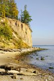 Baltic sea cliff and wild beach Royalty Free Stock Images