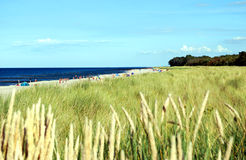 Baltic sea coast Royalty Free Stock Images