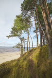 Baltic sea coast. Stock Photo