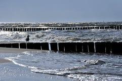 Baltic sea. The coast of the baltic sea Royalty Free Stock Photo