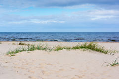 Baltic sea coast in Jurmala. Latvia royalty free stock photography