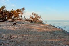Baltic Sea coast. Kolka Stock Photography