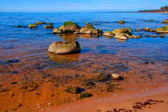 Baltic Sea coast. Kurmrags Royalty Free Stock Photos