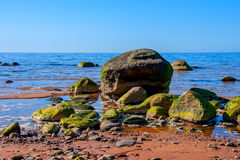 Baltic Sea coast. Kurmrags Royalty Free Stock Image