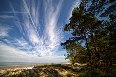 Baltic sea coast, Latvia. Royalty Free Stock Photo