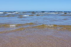 Baltic sea coast line in summer royalty free stock images
