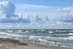 Baltic sea coast, Lithuania Stock Photo