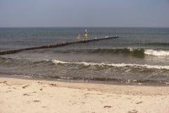 Baltic Sea Coast near Ahrenshoop Royalty Free Stock Image