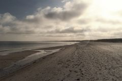 Baltic Sea Coast near Ahrenshoop Stock Photography