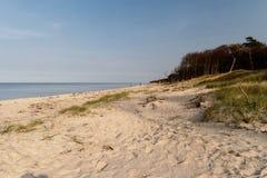 Baltic Sea Coast near Ahrenshoop Stock Photos