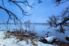 Baltic sea coast near Solvesborg in winter. Sweden Royalty Free Stock Photo