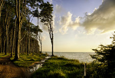 Baltic Sea coast at Nienhagen Stock Image