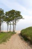 Baltic sea coast. Royalty Free Stock Photos