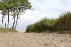 Baltic sea coast. Stock Photos