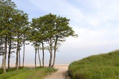 Baltic sea coast. Stock Photo