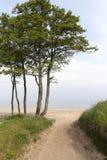 Baltic sea coast. Stock Image