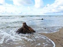 Baltic sea coast sunny day, Lithuania royalty free stock photos