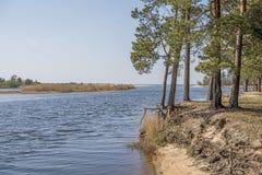 Baltic sea coast. Sunny summer day. Latvia. River called Gauja stock images