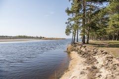 Baltic sea coast. Sunny summer day. Latvia. River called Gauja royalty free stock photo