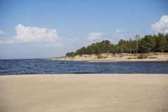 Baltic sea coast. Sunny summer day. Latvia. River called Gauja royalty free stock image