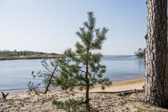 Baltic sea coast. Sunny summer day. Latvia. River called Gauja stock photo