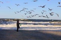 Baltic Sea coast in the winter Royalty Free Stock Photo