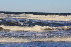 Baltic Sea coast in the winter Stock Photography