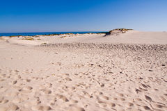 Baltic sea coastline Stock Images