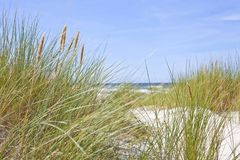 Baltic sea dunes beautiful landscape stock photos