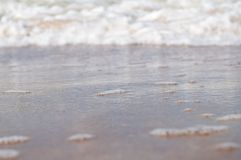 Baltic Sea Foam Royalty Free Stock Images