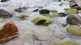 Baltic sea stones. Baltic sea, Germany, stones, water Royalty Free Stock Photography