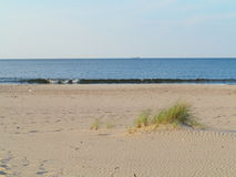 Baltic sea grassy sand dunes in the foreground Royalty Free Stock Images