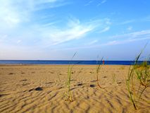 Baltic sea grassy sand dunes in the foreground Royalty Free Stock Photo