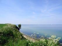 Baltic sea high coast Royalty Free Stock Image