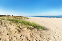 Baltic sea sand dunes Stock Image