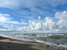 Baltic sea coast, Lithuania Stock Photography