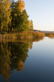 Baltic sea in September. Baltic sea reflecting autumn colors from birches stock images
